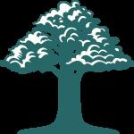 logo cabnet de psychologie et neuropsychologie de montreal